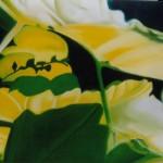 yellow grove, grove, backlight, yellow light,