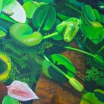 Green Pond $1250 Oil on canvas 100 * 75 cm