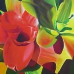 bromeliad design, bromeliad, botanical paintings, succulent,