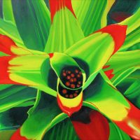 Bromeliad, botanical paintings, tropical plant, succulent, macro tropical plant,