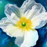 White poppy, flower paintings, floral paintings, white flower,