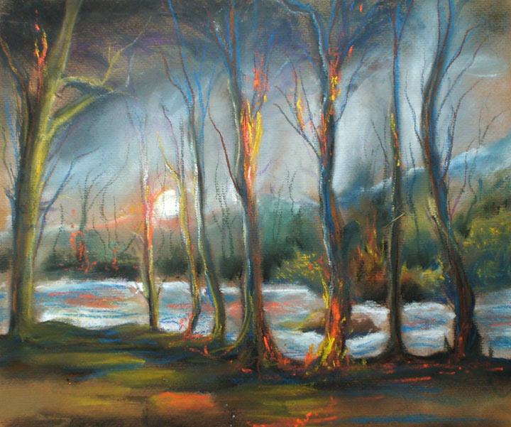 Fire bushfire pastel bushfire drawings bushfire paintings burning trees pastel landscape