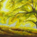 The Special Tree $340 Oil on canvas 30 * 40 cm
