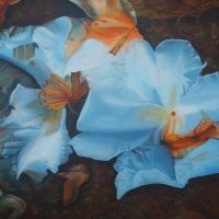 Transience, mortality, blue flower, blue flower paintings, transparent petals,